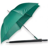 Coachman's Umbrella: Green