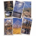 Scenic Series Prayer Cards