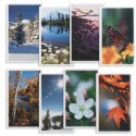 Seasons Medley Prayer Cards